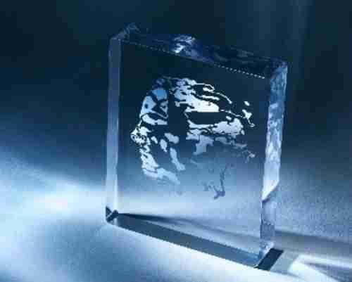 O troféu, em cristal, tem nele incrustada a efígie de Niels Abel.