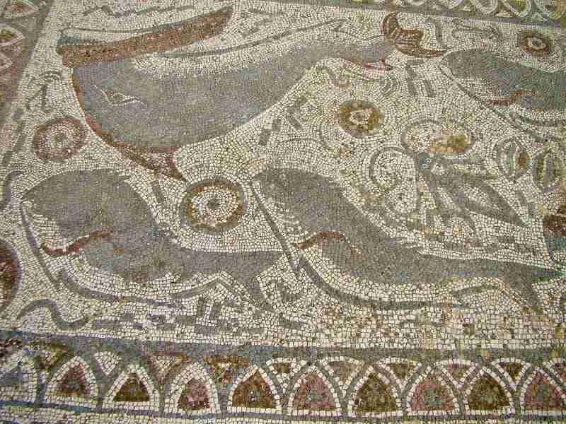 Mosaico Fauna Marinha Ruinas Romanas de Milreu